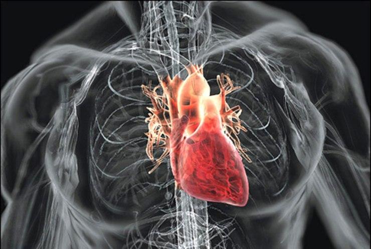 54cfd02ad5c02_-_heartsurgery-01-0611-xln