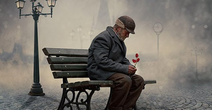 past_love_-_old_man_with_flower_sitting_on_bench