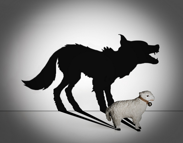 wolf_sheeps_clothing__94581_zoom